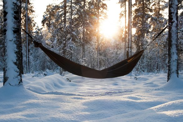 Hammock in a Snowy Forest